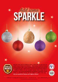 Activity:  Christmas Campaign: Nov & Dec 2019
